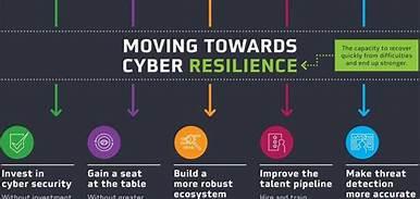 Towards Cyber Reilience