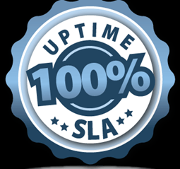 100 pc Uptime SLA 06